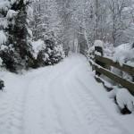wandelweg / ski loipe